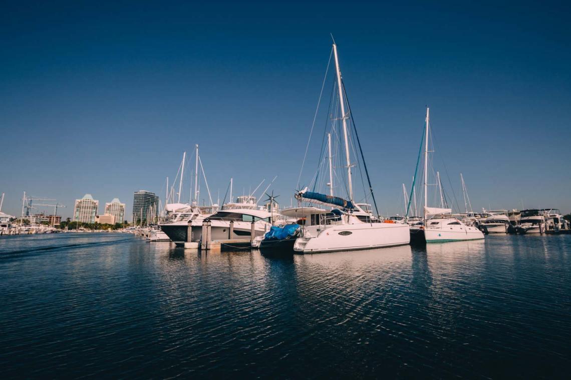 manatee_alligator_love_story_fishing_boats