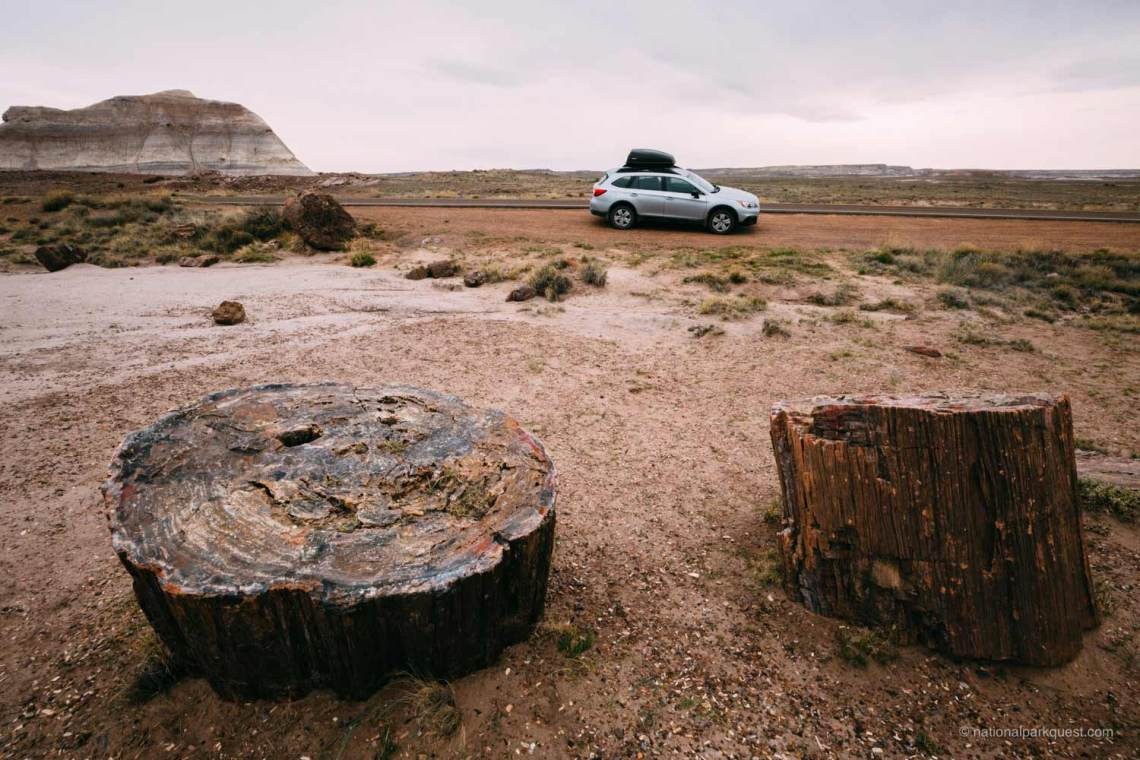 petrified_forest_national_park_voice_echo_trees_car