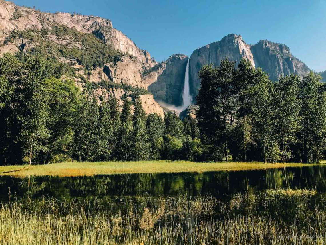 seven_wonders_yosemite_national_park_forest