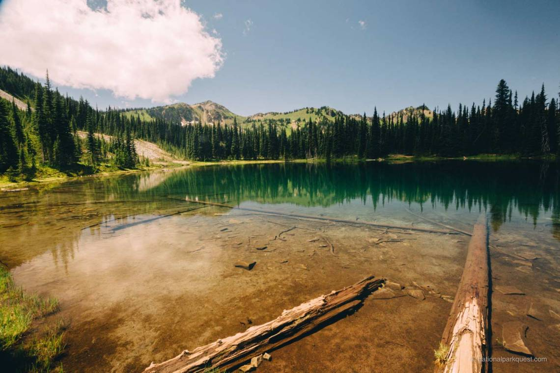 those_who_wander_in_mount_rainier_lake