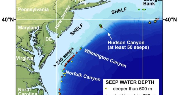 Map of the northern U.S. Atlantic margin showing the locations of newly-discovered methane seeps mapped by researchers from Mississippi State University, the U.S. Geological Survey, and other partners. None of the seeps shown here was known to researchers before 2012. Credit: Image courtesy of U.S. Geological Survey