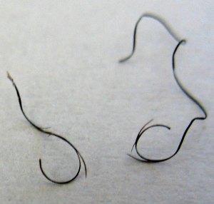 Split hair ends