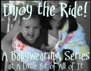 Babywearing Series at A Little Bit of All of It