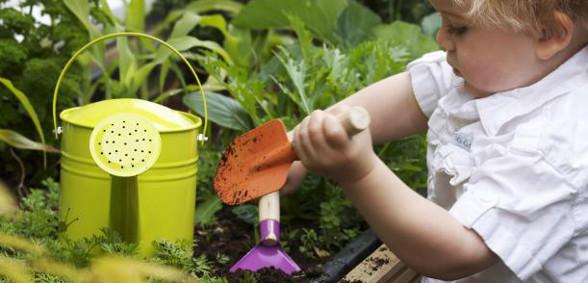 food_Grow-_kid_Flowers_scale