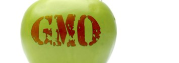 Even If We Ban GMOs, Can GMO Contamination Ever Be Stopped?