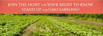 Breaking: Florida City Unanimously Passes GMO Labeling Bill
