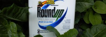 17 Scientists Speak Out: Monsanto's Roundup is Causing Cancer