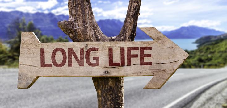 positive_life_long_735_350