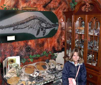 Fossil shop, Genesis Expo