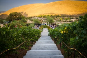 Nella Terra is such a lovely place to get married!