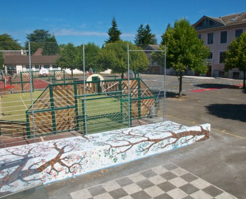 20150713-ecole-chene-bougeries-124