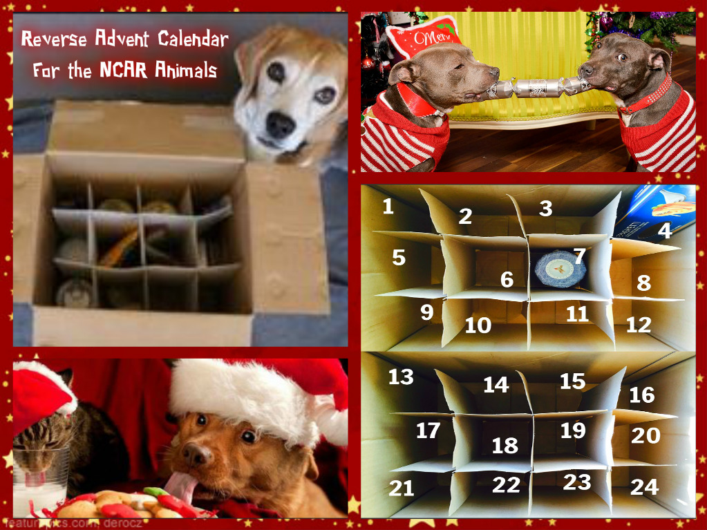 reverse-advent-calendar-for-ncar