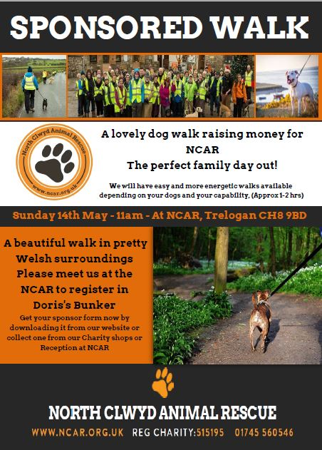 sponsored dog walk