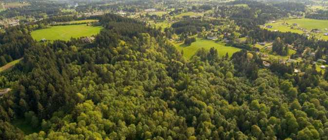 scouters_aerial