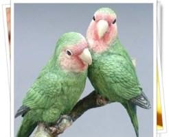 鳥のつがい