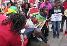 The demonstration brought together a wide range of diaspora groups united in a demand that Mugabe must go