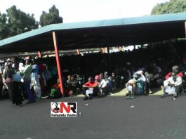 Zimbabweans queuing for asylum in Pretoria, South Africa (Pictures by Nehanda Citizen Reporter)