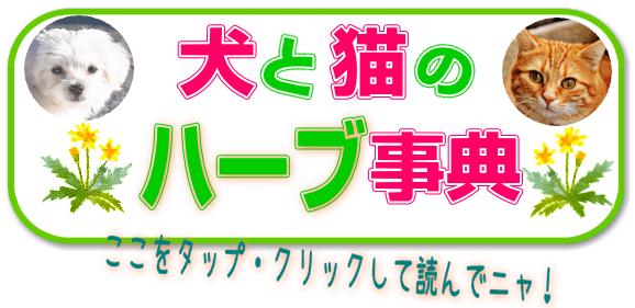 herb_jiten