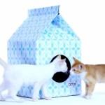 隠れ家に、遊び場に。猫用の牛乳パック型ハウス「Petbo」