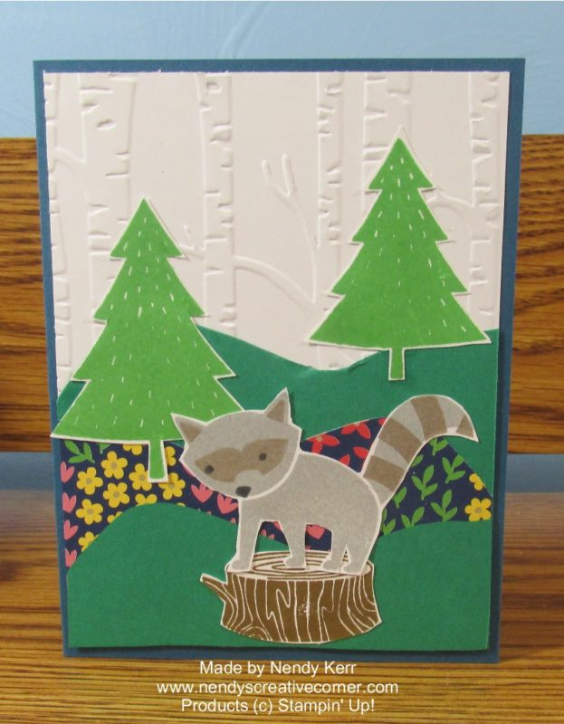Foxy Friends-Raccoon