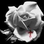 十字架が刻印された薔薇