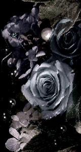 薔薇と水泡(4パターン)