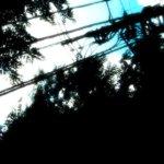 空と電柱の写真素材