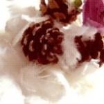 マツボックリと花と羽毛