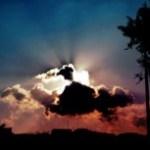 木のシルエットと光芒の写真素材