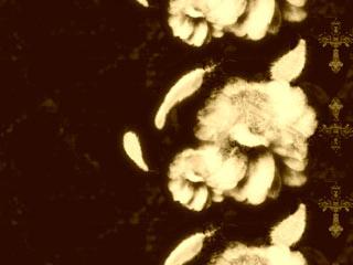 羽根と十字架と花(4パターン)