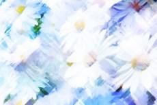 cover-flower007