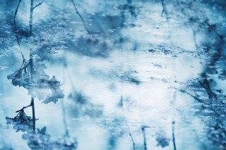 【高解像度】波紋と桜(3パターン)