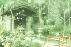 outdoor-scenery-057