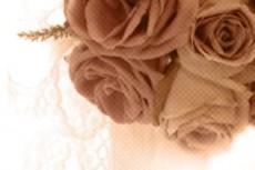 flower248