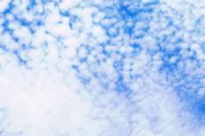 sky174
