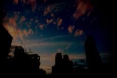 sky231