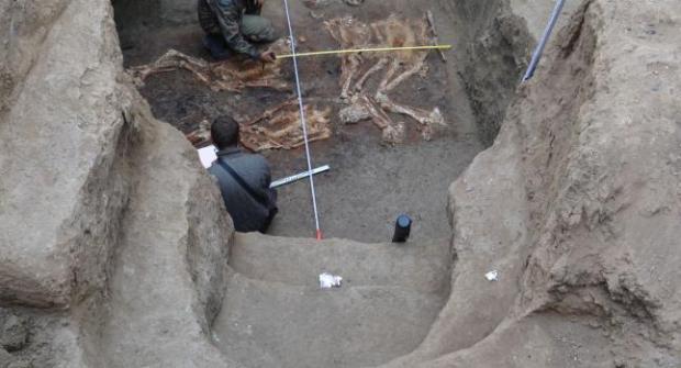 esqueletos de 2,1 metros kiban