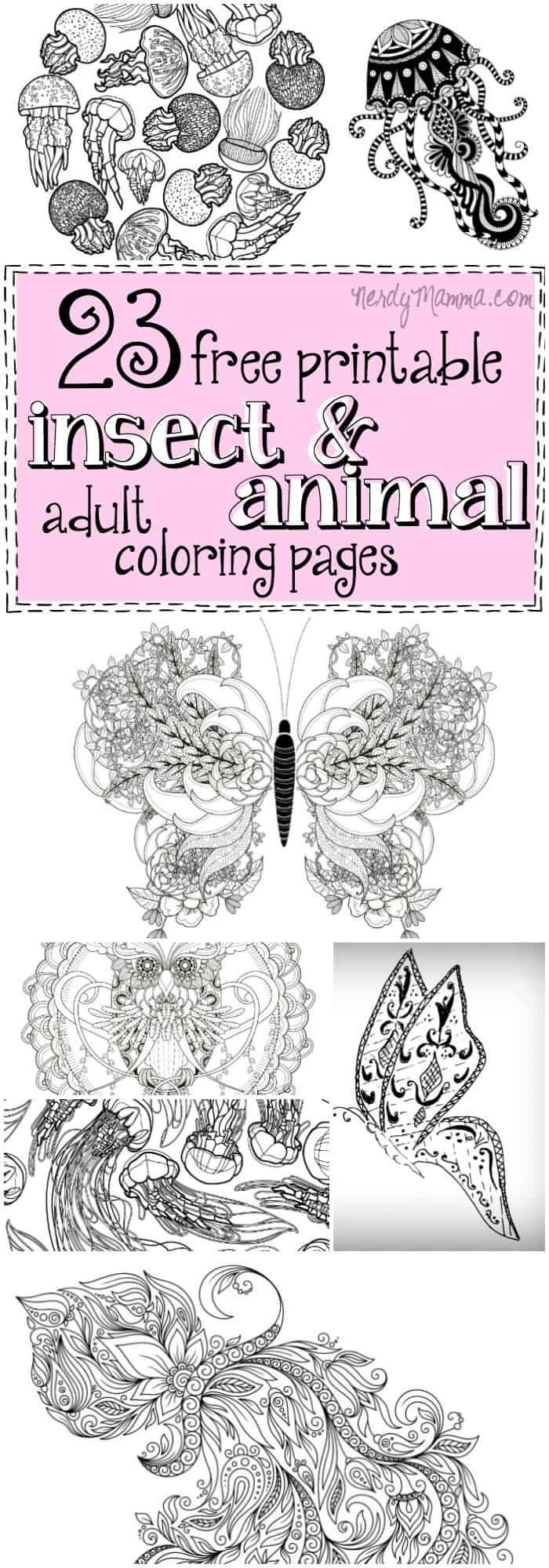 love insect coloring pages - photo#28