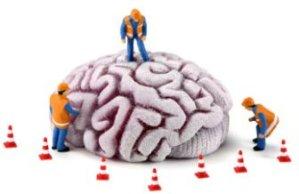 brain_work