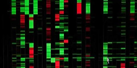 brain-tumor-treatments-cns-pnet-genetic-markers