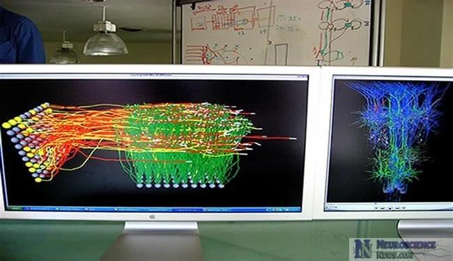 computational-neuroscience-neurons