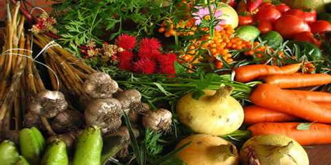 fruits-vegetables-diet