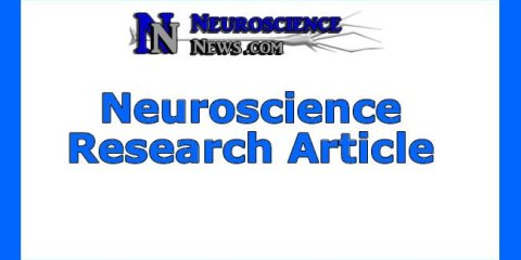 neuroscience-research-article6