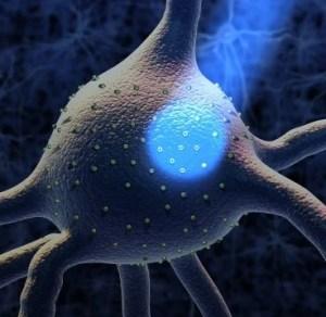 The image shows a light beam shining onto a neuron.