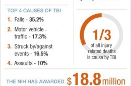 The infographic shows the cost of tbi per year.