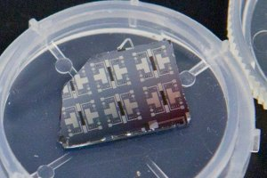 This is the synaptic transistor.