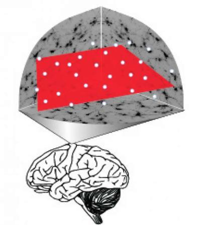 this image shows the brain with a red box inside it.