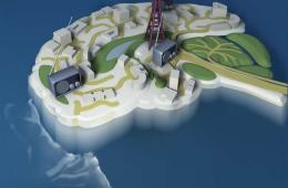 Image shows a brain model surrounded by water, as though it is an island.