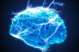 Image of a blue brain.