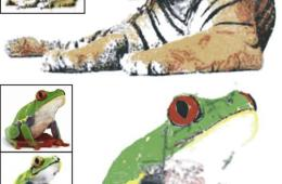 Image shows a frog and tiger pained by the robot.